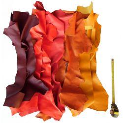 Chutes de cuir Chèvre Multicolores