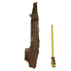Peau de Crocodile Marron foncé