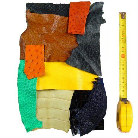 10 morceaux cuir Exotique multicolores